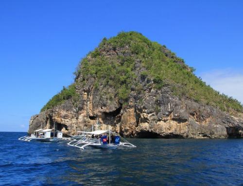 Filipiny – nurkowanie na Malapscua