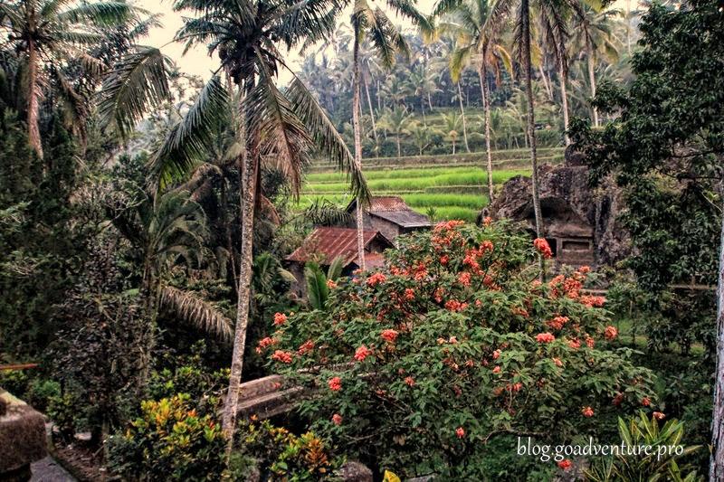 Bali Pura Gunung Kawi 16