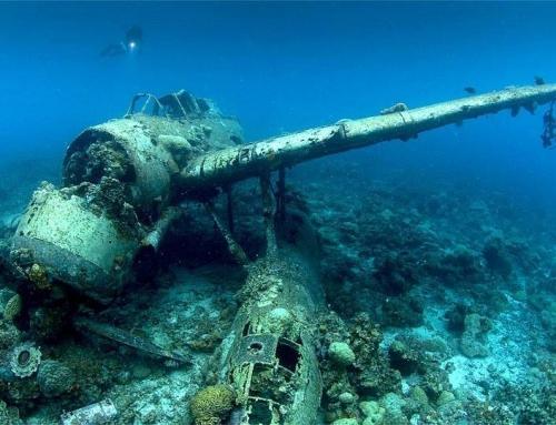 Jack Sea plane – piekna historia pewnego wraku samolotu.
