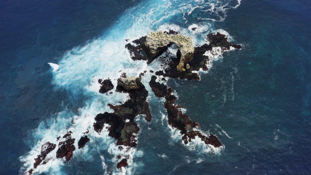 Nurkowanie na Galapagos Darwin Wolf