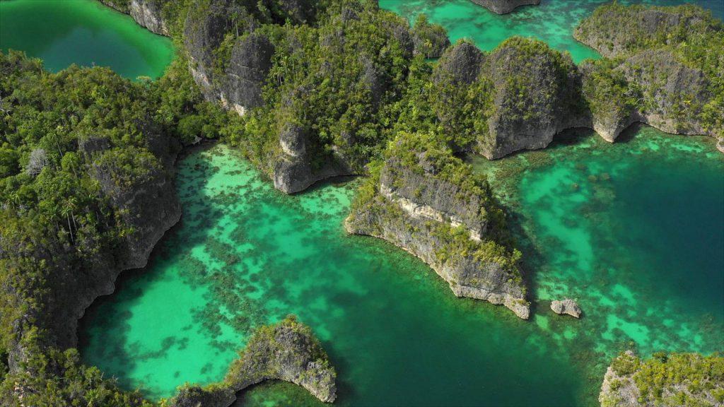 Nurkowanie Raja Ampat