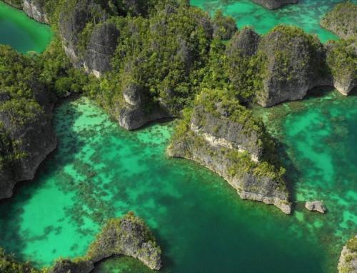 """Nurkowanie Raja Ampat w Papui Zachodniej – """"Raj Odnaleziony"""""""